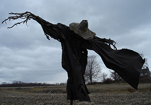 the scarecrow waltz kerry l marzock